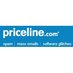 Priceline's little-known services